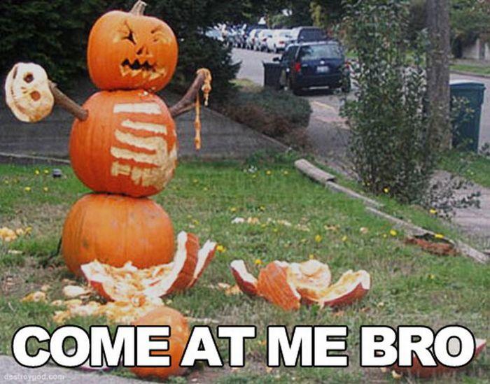 Funny Amazing Hilarious Halloween Pumpkins And Meme