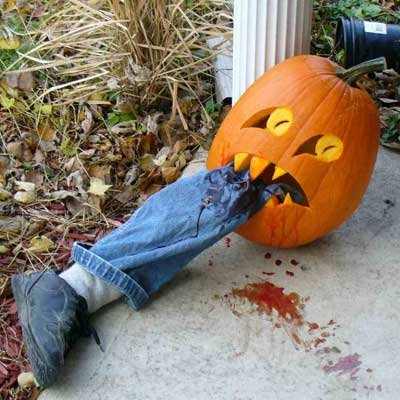 Funny Amazing Hilarious Halloween Pumpkins and Meme's for a Good ...