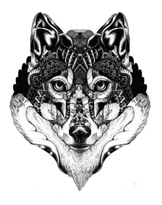 foxvn