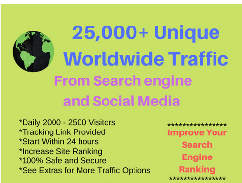 Organic and Targetd 25000 worldwide Unique IP visitors traffic