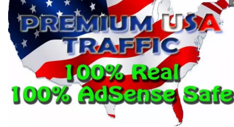 Two Month Daily Unlimited Premium Real Unique and Organic Website Visitors Traffic