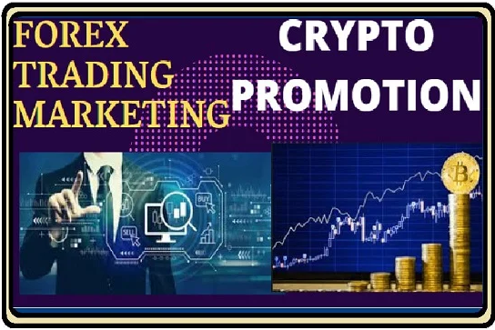 THREE MONTH REAL UNLIMITED Organic Crypto Currency Bitcoin Website Visitors Traffic