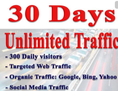 Bring Real and UNIQUE Visitors, Targeted Web Traffic, From Usa, Uk for ONE MONTH