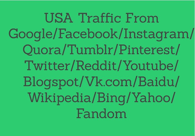 1000 USA Traffic from Google.com. (Organic) (Custom Keywords)