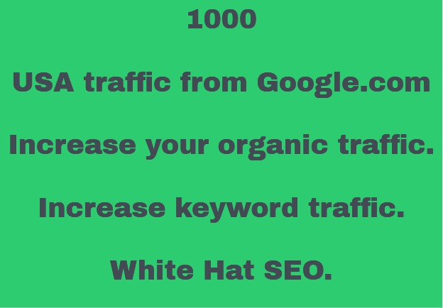 1000 USA Traffic from Google. com. Organic Custom Keywords