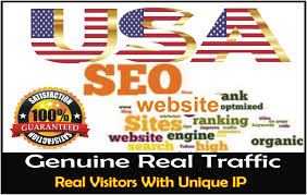 12000 + USA BASE WEBSITE TRAFFIC VISIT YOUR WEBSITE