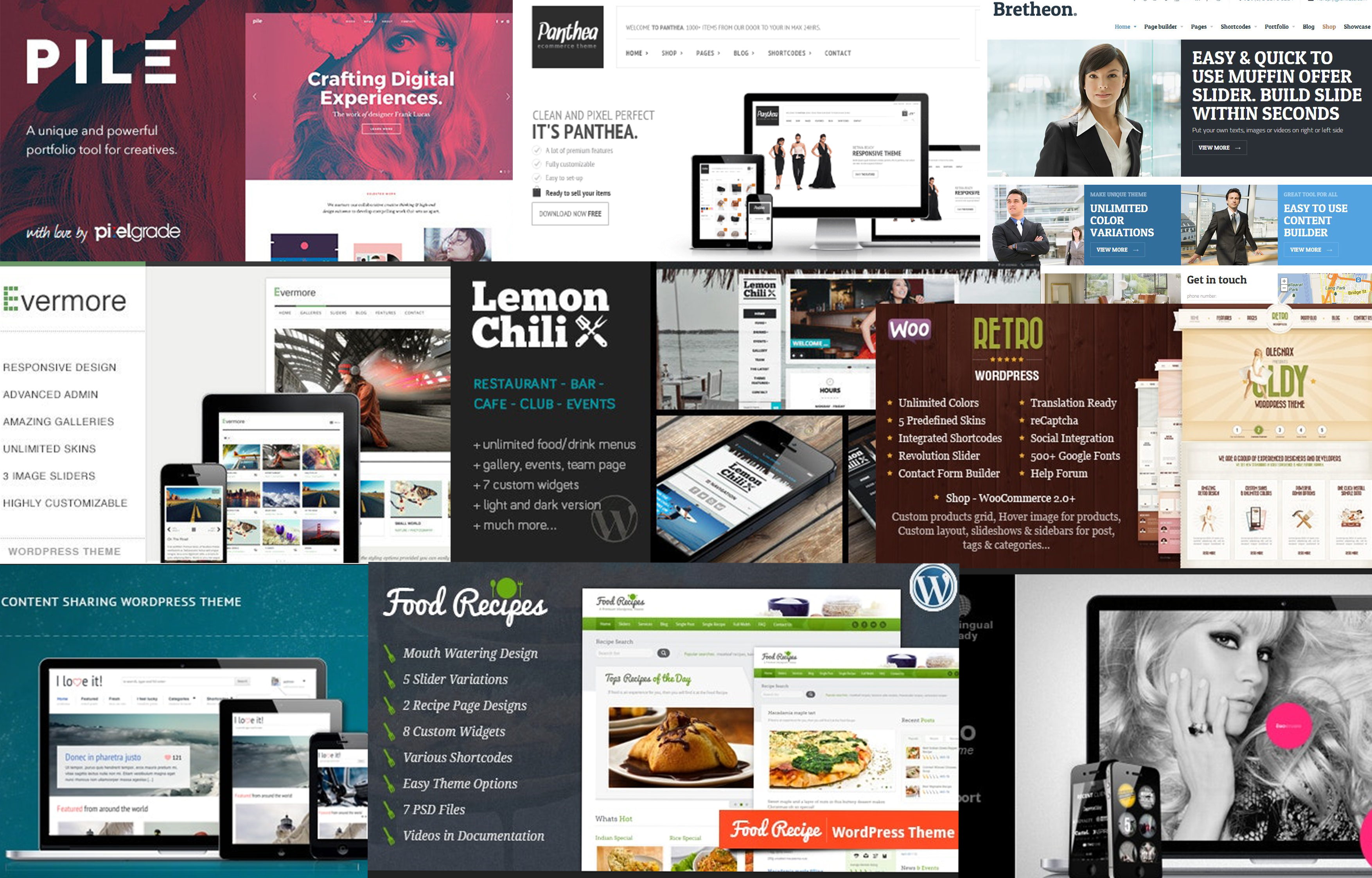 I will Give Genuine 170 Wordpress Themes and 150 Wordpress Plugins