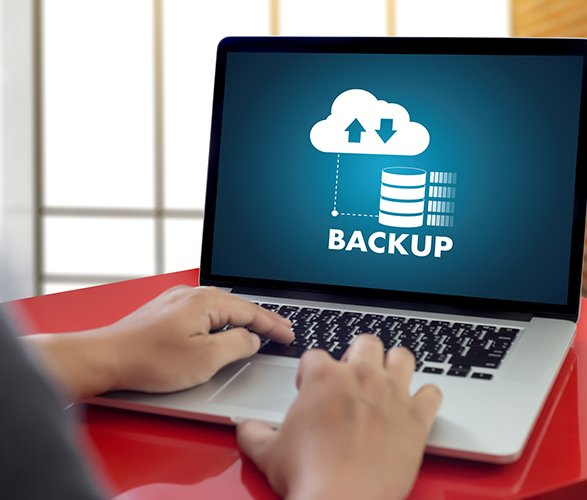 I will make a backup your wordpress site
