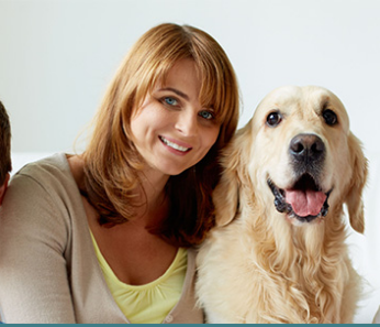I will publish guest posts on pet for family US high da SEO