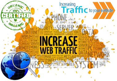 Ultimate 5,000+ USA Real Human WEB TRAFFIC to Your Website Top Ranking