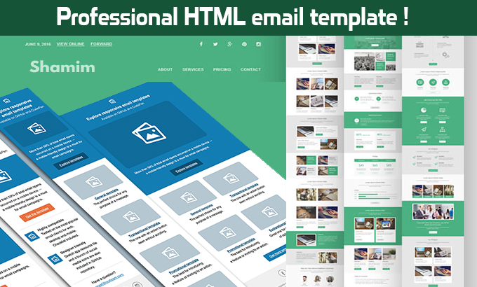 design a professional HTML email template or business newsletter