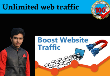 I will bring real visitors targeted,  web traffic for your website