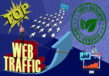 WEB TRAFFIC 7,000+ HQ USA Traffic Visitors Worldwide to Your Website