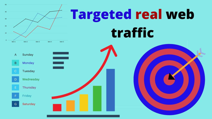 deliver 7000+ USA Europe Real Web Traffic For your WEB site