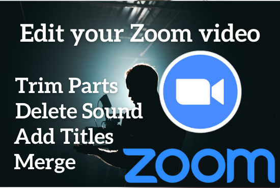 I will edit your zoom meeting video
