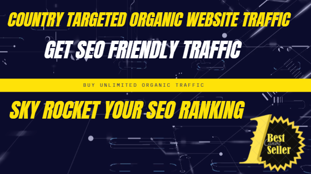I will send 10,000 real SEO friendly visitors to your website from any country and source
