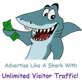 Unlimited Traffic Visitors For Website Or Affiliate L...