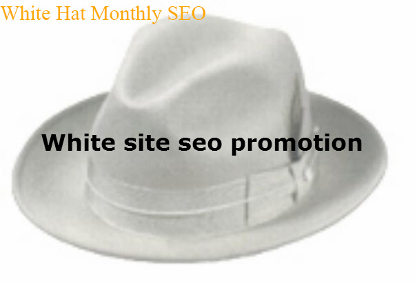 Get 100% White Hat 1 Month SEO Package - Google Safe SEO Link build Service