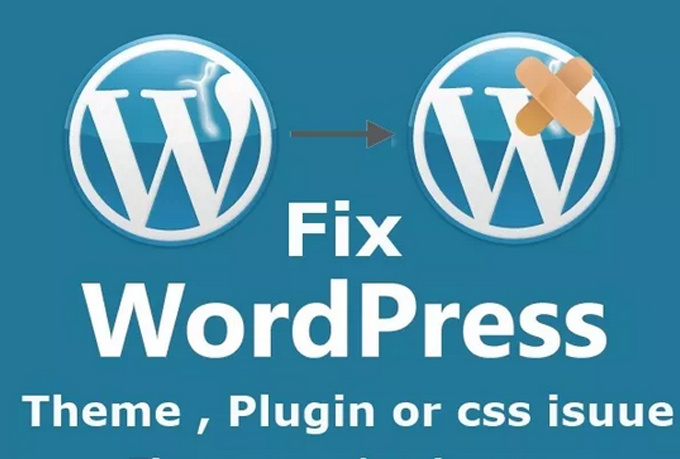 I will fix your Wordpress theme and layout issues