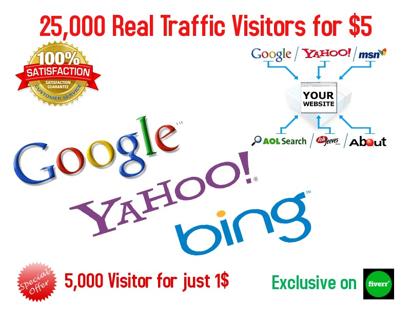 I will drive 25,000 real target traffic to your website