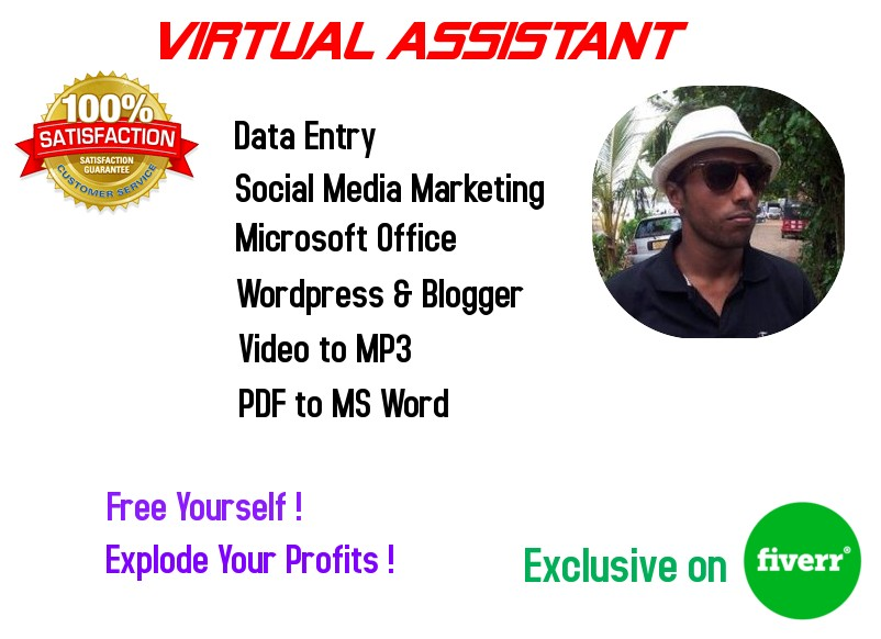 I will be your virtual assistant for 4hours