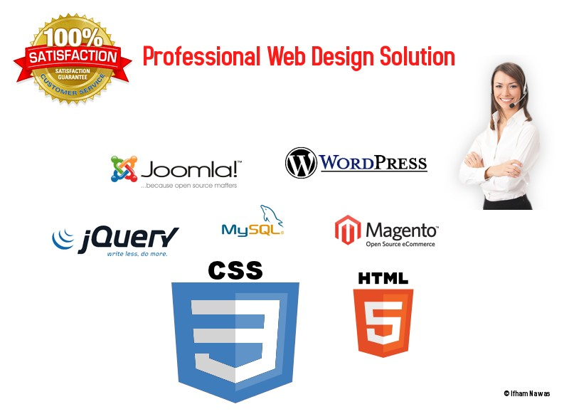 I will design professional website