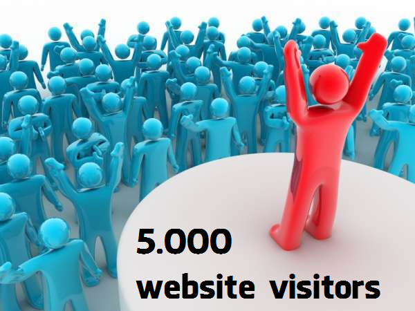 Express 5000 Real Worldwide Visitors Traffic to Website in 24 Hour