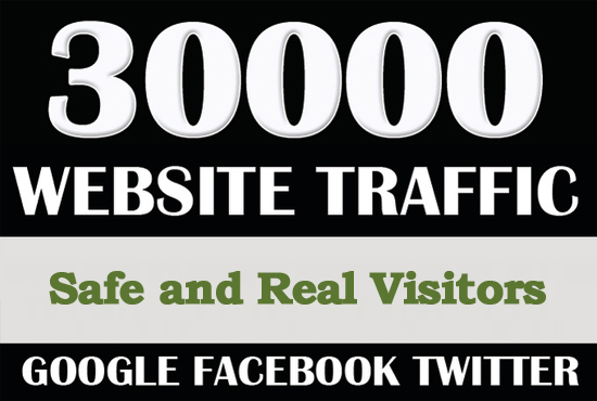 30000 Worldwide Real Visitors Traffic to Website