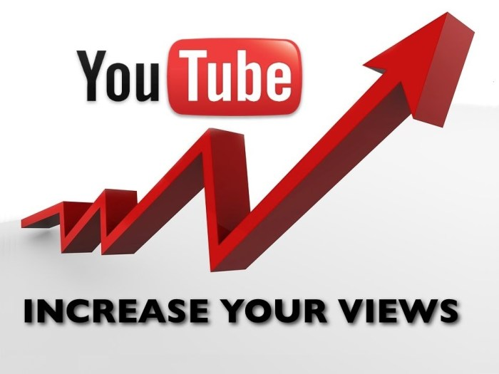 We will Promote Your Youtube to Get 1000 Views