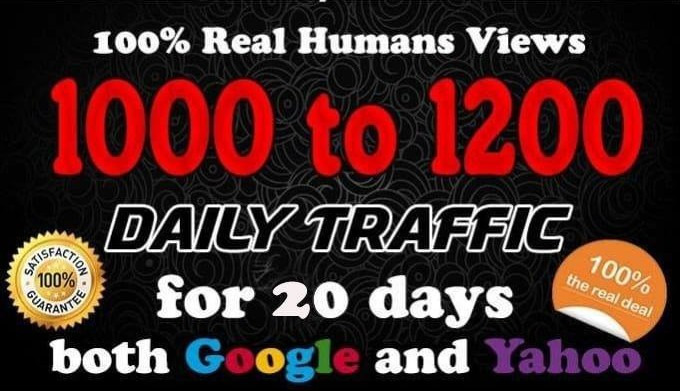 1000 Daily Real human Traffic for 30days