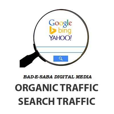 Get 1000+ Organic Traffic For Your Website or Blog