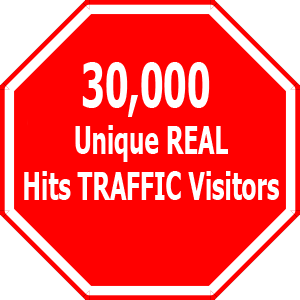 Drive 1000 VISITORS PER DAY FOR 30 Days