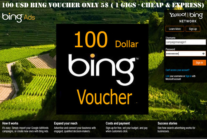 I will give you 100 Bing Ads Coupon Code for