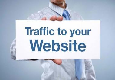 Website Traffic Visitors