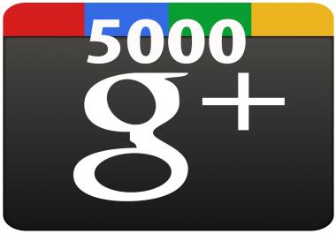 Google+ Circles 5000 mixed with shares