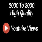 Instant 2000-3000 High Quality Youtube Vie ws