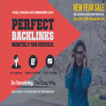 PERFECT BACKLINKS 30 Days Whitehat AUTHORITY Link Building Service