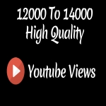 Instant 12000 to 14000 High Quality Youtube Vie ws - High Retention