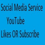 provide you 500 likes or 100 subscribe only