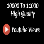 Instant 10000 to 12000 High Quality Youtube Vie ws