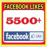 Add 5,500+ Real Facebook Likes Within 48-72 Hours to your Fan page