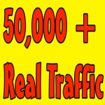 50000 Real Website Visitors Traffic to Website OR Blog