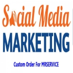 Instant 1000 High Quality Social Profile Followers