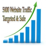 Express 5000 Targeted Website Visitors Traffic in 24 Hours