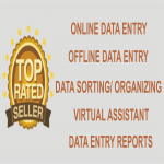 I will do quality Data entry,  data entry and data entry 4 hours