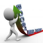 60000 Niche Targeted 18+ Web Traffic,  Visitors