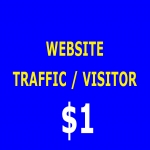 6000+ Real human website traffic/visitors