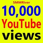 Fast 10,000+ Views High Retention 99 Ad-sense Safe & Non Drop