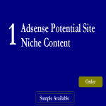 Super Micro NIche Adsense Sites Guaranteed Earnings Exclusive Seoclerks