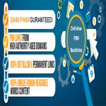 Add 6 Permanent DoFollow DA60 PA60 PBN link Xclusive Offer